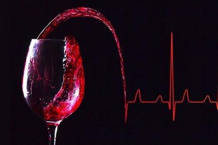 vino y salud marques de teran